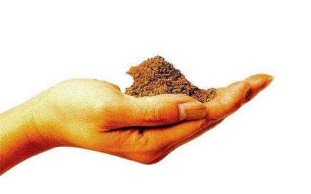 土壤学专业|俄罗斯留学专业介绍缩略图