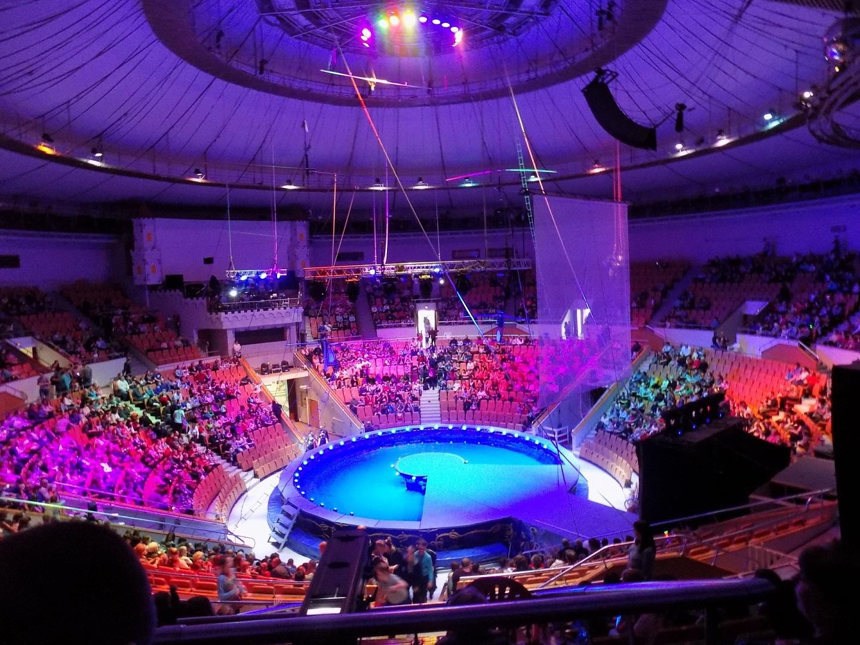 叶卡捷琳堡的马戏团经常有各种节目可以看