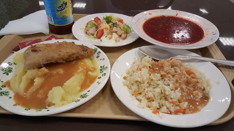 这是乌拉尔联邦大学的食堂点的菜,一份30元左右,分量比较小,所以得多点几份