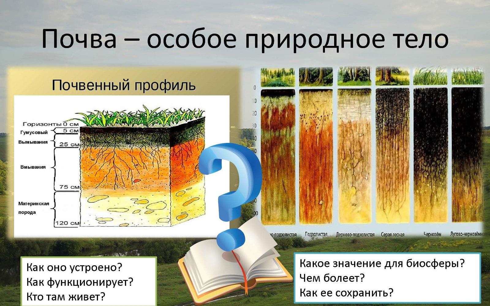 圣彼得堡国立大学本科专业《土壤学》详细介绍!插图-小狮座俄罗斯留学