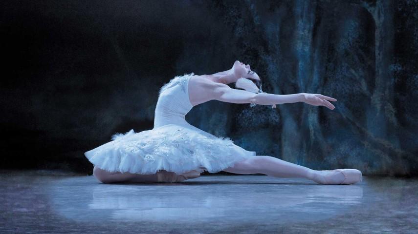 浪漫的艺术:从意大利到俄罗斯,芭蕾舞的400年变迁。