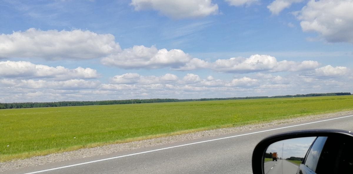 白天开车在新西伯利亚 - 鄂木斯克(Омск)的高速公路上